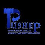 pushepv1